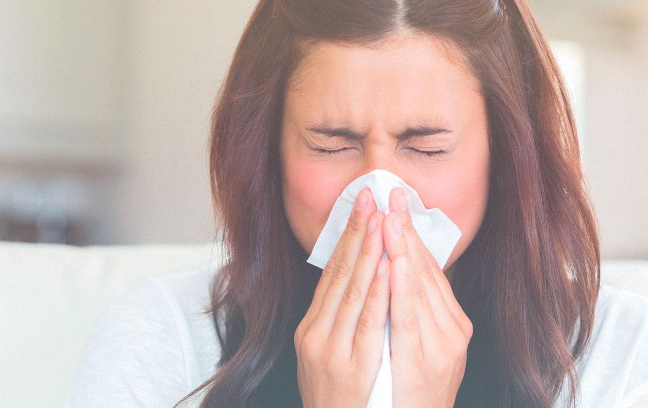 alergias sistema red